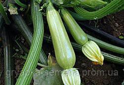 Кабачок Сцилли F1 Seminis 500 семян