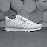 Чоловічі кросівки Reebok Classic (білі), фото 2