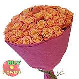 Роза розовая Мисс Пигги 40 - 110 см, фото 3