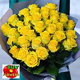 Роза желтая Пени Лейн 40 - 100 см, фото 8