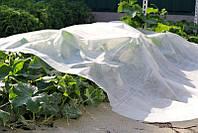 Агроволокно на метраж 30 г/м, ширина 1.6 м. Чехія, фото 1