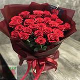 Роза красная Ред Игл 40 - 100 см, фото 3