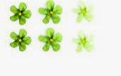 Гелевый краситель УКРАСА (Универсальный) 25г. Ярко зеленый