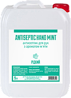 Антисептик спиртовый жидкий для рук с отдушкой мята AntiSeptiс Hand mint 5 л