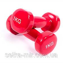 Гантели для фитеса, винил, 1 кг х 2 шт., Красный