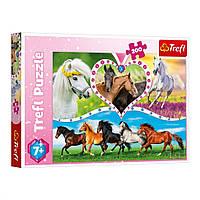 Пазл Trefl. Красивые лошадки 13248 (200 элм.)
