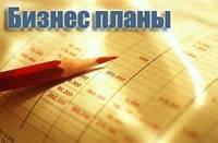 Разработка бизнес-планов, ТЭО, инвестиционных проектов, маркетинг
