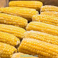 Кукурудза заморожена (качани), фасування від 10 кг