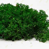 Стабилизированный мох Green Ecco Moss ягель украинский темно-зеленый 0.5 кг