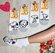 Набір білих жіночих шкарпеток з собачкою (4 пари), розмір 36-39