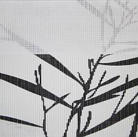 Рулонные шторы День-ночь Ткань Токио Красно-чёрный