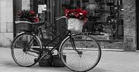 Репродукция на холсте, Ретро-велосипед