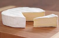 Закваски для сыра с белой плесенью Penicillium Candidum 500л