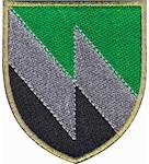 Шеврон 8 окремий полк зв'язку (кольоровий)