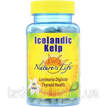 Nature's Life, Исландская бурая водоросль, Icelandic Kelp, Келп, 250 таблеток