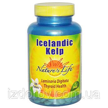 Nature's Life, Исландская бурая водоросль, Icelandic Kelp, Келп, 500 таблеток