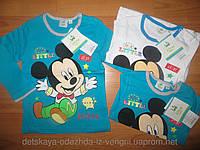 Реглан для мальчика Disney 62/68-86 рр