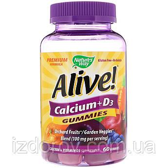Nature's Way, Alive! Кальций + D3, 60 жевательных таблеток