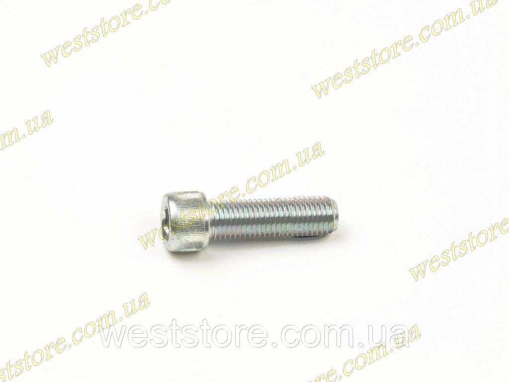 Болт крепления суппорта к кулаку под внутренний шестиграннник Ланос Сенс Lanos Sens 94501248