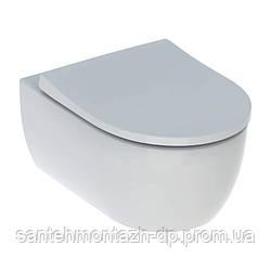ICON унитаз подвесной Rimfree, воронкоподобный, закритая форма, с сиденьем slow closing, с быстросъемными
