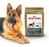 ROYAL CANIN German Shepherd 12 кг.Роял Канин корм для собак породы немецкая овчарка .