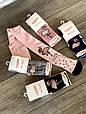 Дитячі колготи м'які бавовняні Pier Lone з фламінго в стразина 3,5 л 6 шт. в уп мікс кольорів, фото 5
