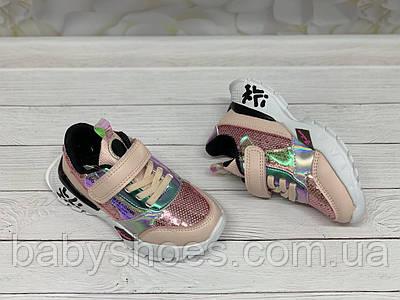 Кроссовки для девочки Kimboo  р.27-32. КД-608