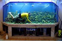 Обслуживание аквариумов г. Донецк