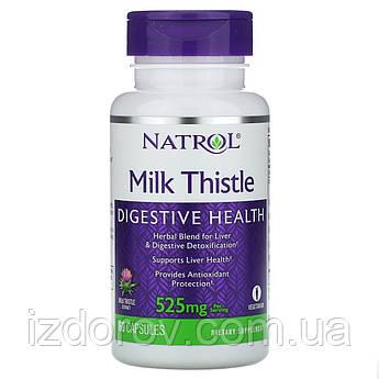 Natrol, Молочный чертополох 525 мг, Расторопши экстракт, натуральный гепатопротектор, Milk Thistle, 60 капсул