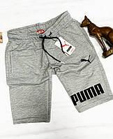 Шорты Puma summer gray