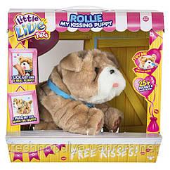 Интерактивная игрушка Little Live Pets Ласковый щенок Ролли (28669)