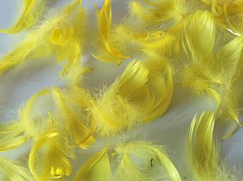 Пасхальный декор, перо желтое