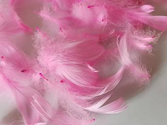 Пасхальный декор, перо розовое
