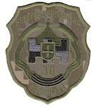 Шеврон 30 танкова дивизія Новоград-Волинська Рівненська