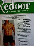 Мужские боксеры тонкая резинка  Redoor, фото 2