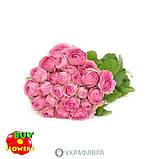 Роза розовая Лавендер Лейс екстра, фото 4
