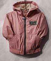 """Куртка дитяча на флісі на дівчинку 92-116 см (9цв) """"BENTLEY"""" купити недорого від прямого постачальника"""