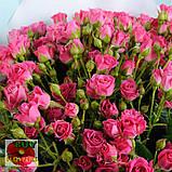Лавли Лидия роза веточная, фото 4