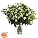 Мисс Бомбастик роза белая спрей, фото 8