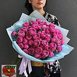 Мисти Баблз роза пионовидная, фото 2