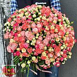 Розы микс спрей, фото 4