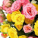 Розы микс спрей, фото 5