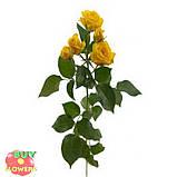 Шанни роза желтая ветка, фото 4