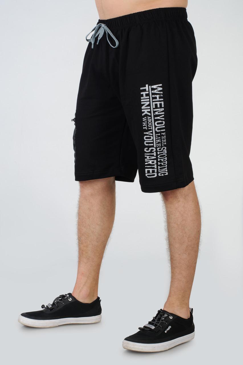 Чоловічі подовжені шорти трикотажні Tailer розмірів 56-64 Баталов