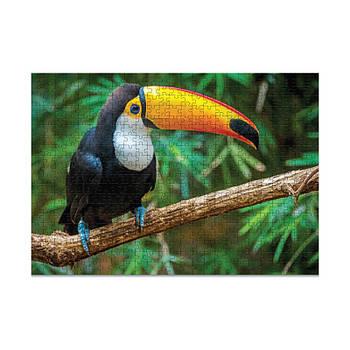 Пазл Птах Тукан. Бразилія (500 елементів)