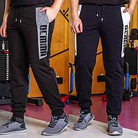 Мужские трикотажные спортивные штаны на манжете. 4 цвета!