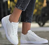 Кеды женские весенние летние кроссовки сетка на лето повседневные мягкие белого цвета 37 размера Restime 21835