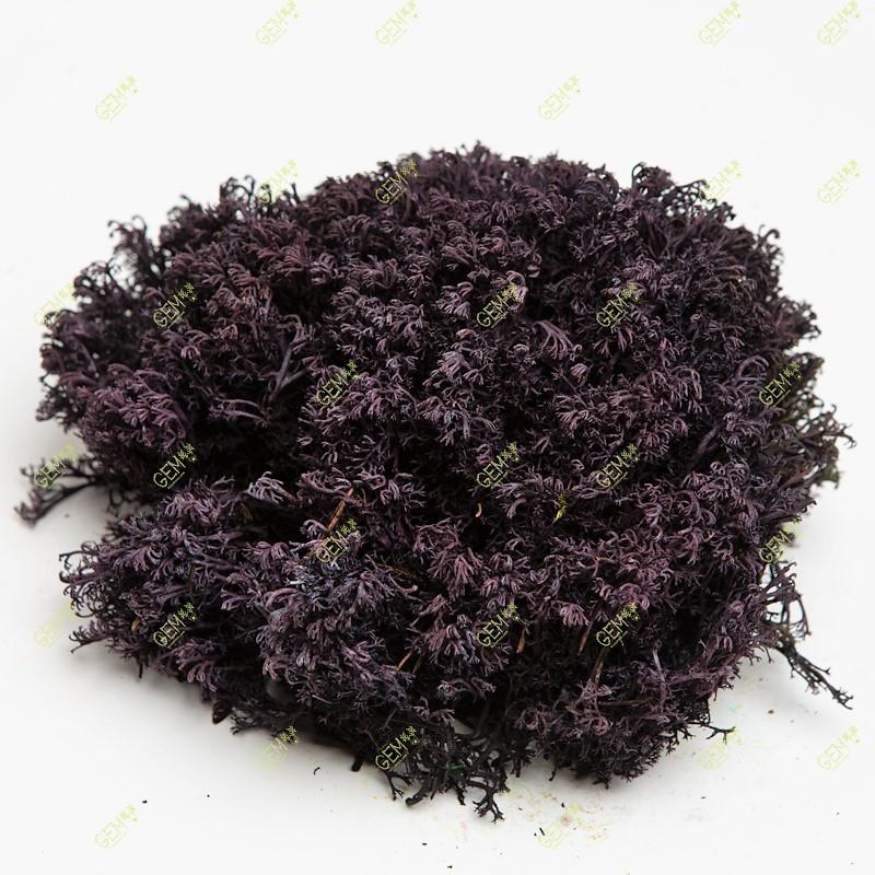 Стабілізований мох Green Ecco Лишайник ягель український фіолетовий 4 кг