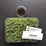 Набір для вирощування мікрозелені (13 врожаїв), фото 2