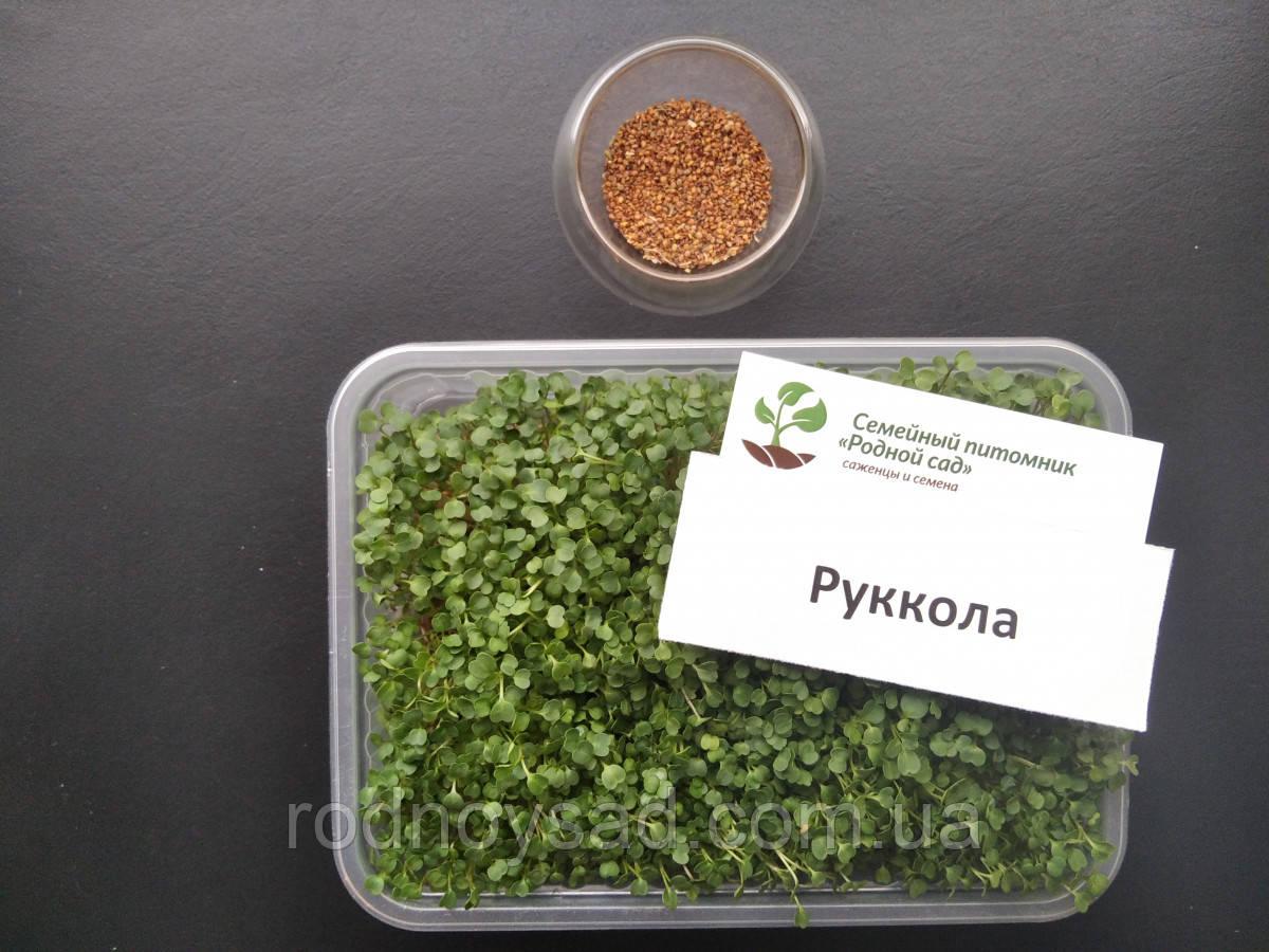 Рукола насіння для мікрозелені (5 грам)